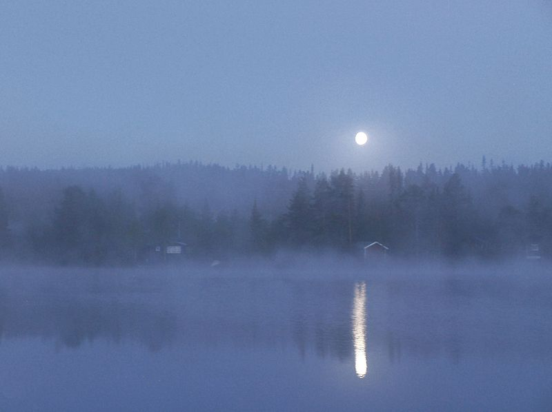 Moonlight illuminates a lake and surroundings